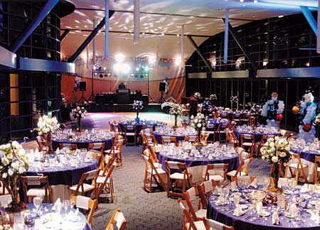 Overview of The Party Link decor